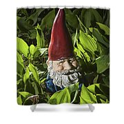 Garden Gnome No 0065 Shower Curtain