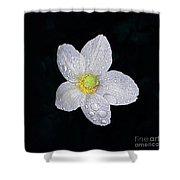 Garden Jewel And Rain Shower Curtain