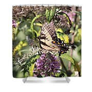 Garden Of Colors Shower Curtain