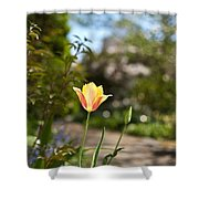 Garden Radiance Shower Curtain