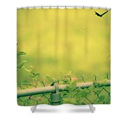 Garden Scene After Lightroom Shower Curtain