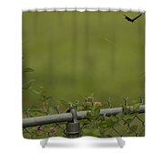 Garden Scene Before Lightroom Shower Curtain