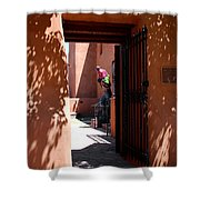 Garden Sculptures Museum Of Art In Santa Fe Nm Shower Curtain