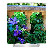 Garden Wall With Periwinkle Flowers Shower Curtain