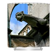 Gargoyle Of Saint Denis Shower Curtain