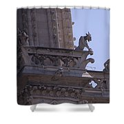 Gargoyles At Notre Dame Cathedral Shower Curtain