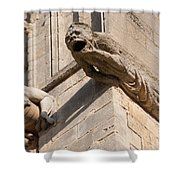 Gargoyles On Ely Cathedral Shower Curtain
