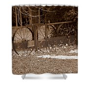 Gate To The Past Shower Curtain