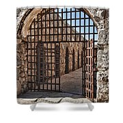 Gateway To The Unknown Shower Curtain by Sandra Bronstein