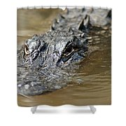 Gator 3 Shower Curtain