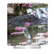 Gator Among Crape Myrtle Shower Curtain