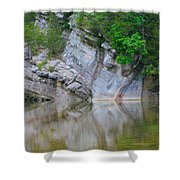 Gator Rock Shower Curtain