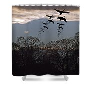 Geese At Dusk Shower Curtain