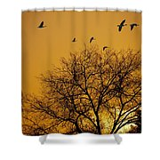 Geese At Sunrise Shower Curtain