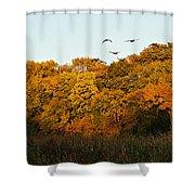 Geese Flight Shower Curtain