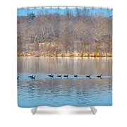 Geese In The Schuylkill River Shower Curtain