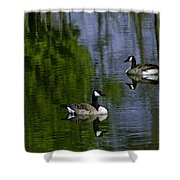 Geese On The Pond Shower Curtain