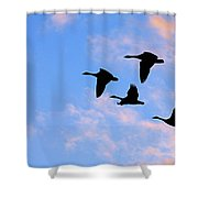 Geese Silhouetted At Sunset - 2 Shower Curtain