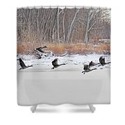 Geese Take Flight Over The Maumee River Shower Curtain