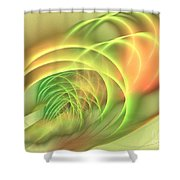 Geomagnetic Shower Curtain