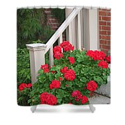 Geraniums On The Steps Shower Curtain