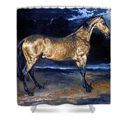 Gericault: Horse Shower Curtain