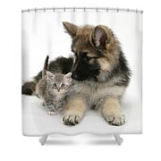 German Shepherd Dog Pup With A Tabby Shower Curtain