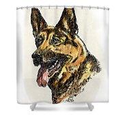 German-shepherd-portrait Shower Curtain