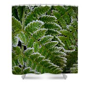 Getting Colder Shower Curtain