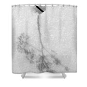 Ghost Of Summer Past Shower Curtain