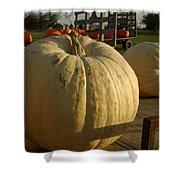 Ghost Pumpkin Shower Curtain