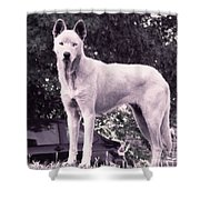 Ghost The Wolf Shower Curtain