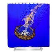 Ghostly Jellyfish Shower Curtain