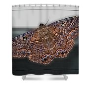 Giant Moth Shower Curtain