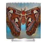 Giant Silk Moth Shower Curtain