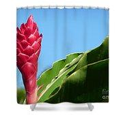 Ginger Flower Shower Curtain