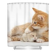 Ginger Kitten And Russian Hamster Shower Curtain