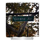 Girard Avenue In Philadelphia Shower Curtain