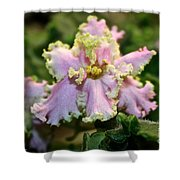 Glamour Blossom Shower Curtain