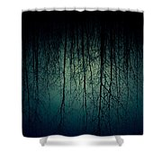 Glares Of Tree Stares Shower Curtain