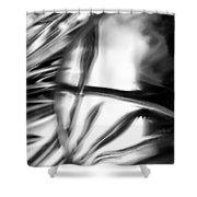 Glasswork Series 1 #2 Shower Curtain