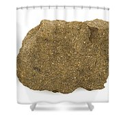 Glauconite Sandstone Shower Curtain