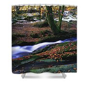 Glenmacnass Waterfall, Co Wicklow Shower Curtain