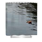 Gliding Across The Pond Shower Curtain