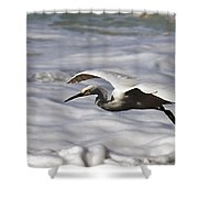 Gliding Snowy Egret Shower Curtain