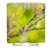 Glimpse Of Spring Shower Curtain
