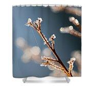 Glistening Ice Crystals Shower Curtain