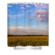 Glorious Life Shower Curtain