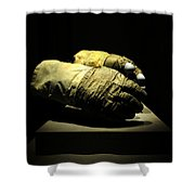 Gloves Of Apollo Shower Curtain