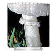 Glowing Mushroom Shower Curtain